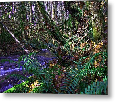 A Hidden Creek Metal Print by Steve Battle