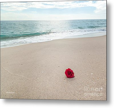 A Message In A Rose Metal Print by Michelle Wiarda