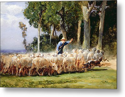 A Shepherd With A Flock Of Sheep Metal Print by Charles Emile Jacques