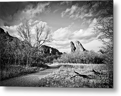 A Surreal Walk Metal Print
