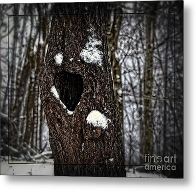 A Tree With Heart Metal Print by Brenda Bostic