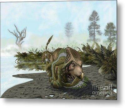A Velociraptor Attacks A Protoceratops Metal Print