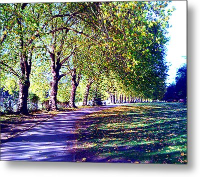 A Walk In The Park Metal Print by A Dx