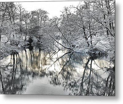 A Winter Scene Metal Print by Paul Gulliver