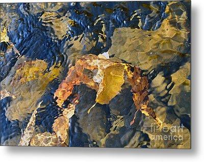 Abstract Leaves In Water Metal Print by Dan Friend