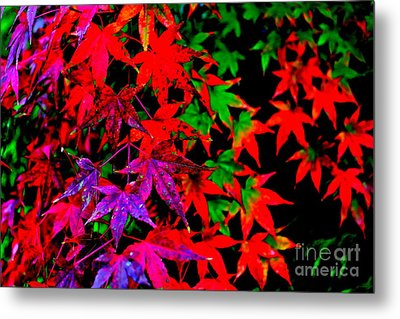 Abstract Leaves Metal Print by Jay Nodianos