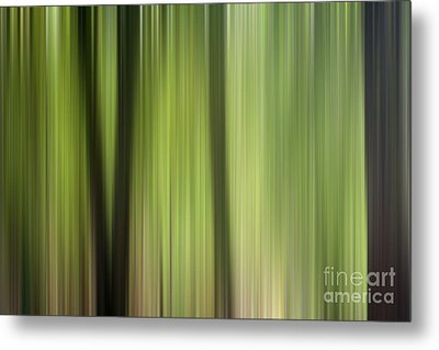 Abstract Trees In The Forest Metal Print by Natalie Kinnear