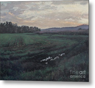 After The Rain Metal Print by Gregory Arnett