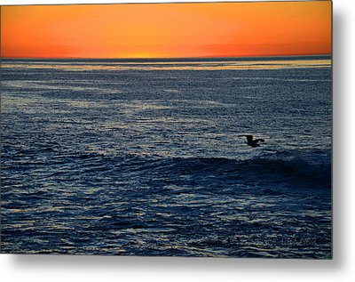 After The Sunset Glow In La Jolla Metal Print by Sharon Soberon