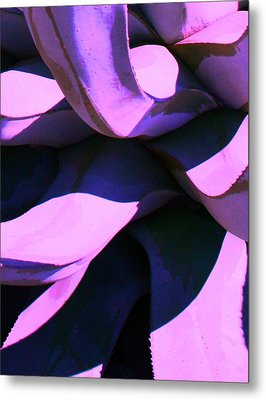 Metal Print featuring the photograph Agave by Steve Godleski