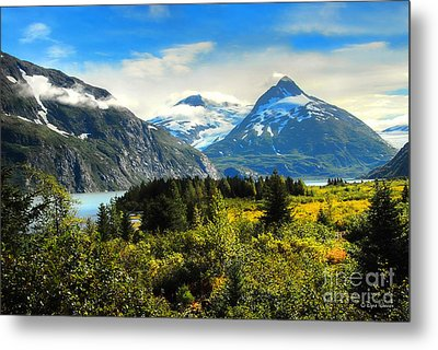 Metal Print featuring the photograph Alaska In All Her Glory by Dyle   Warren