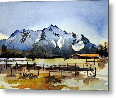 Alaskan Springtime Metal Print by Spencer Meagher