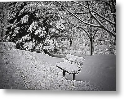 Metal Print featuring the photograph Alone In The Park.... by Deborah Klubertanz