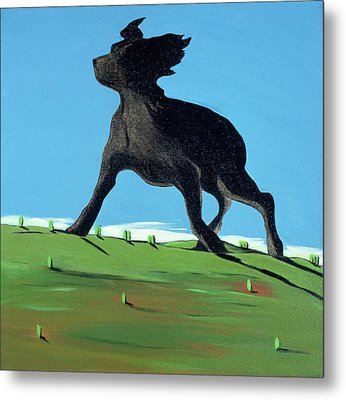 Amazing Black Dog, 2000 Metal Print by Marjorie Weiss