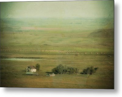An Abandoned Farmhouse Metal Print by Roberta Murray