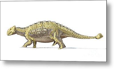 An Ankylosaurus Dinosaur With Full Metal Print by Leonello Calvetti