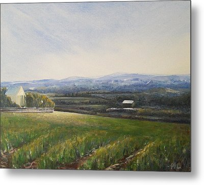 Metal Print featuring the painting Aotearoa by Jane  See