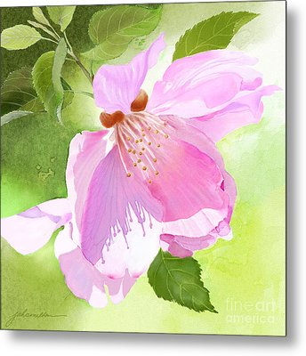Apple Blossom Three Metal Print
