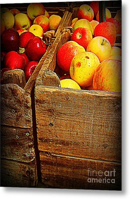 Apples In Old Bin Metal Print by Miriam Danar