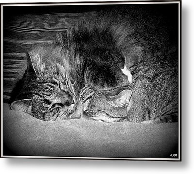 Arm Rest Metal Print by Heidi Manly