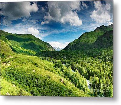 Art Beautiful Greens Landscape Metal Print by Boon Mee