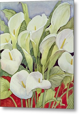Arum Lillies Metal Print