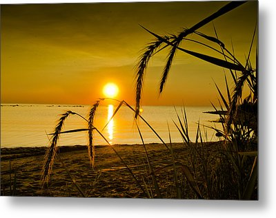 Metal Print featuring the photograph Ascend by Jason Naudi Photography