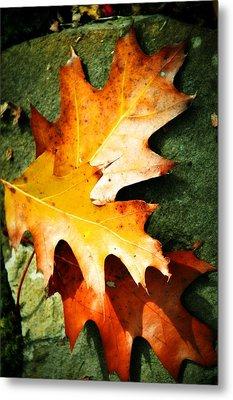 Autumn Blaze Metal Print by JAMART Photography