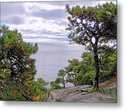 Metal Print featuring the photograph Autumn Coast by Gene Cyr