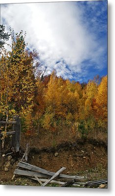 Autumn Fence Metal Print by Bogdan M Nicolae