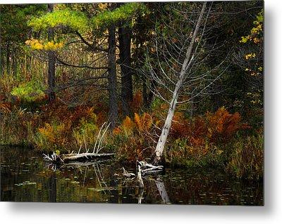 Metal Print featuring the photograph Autumn Landscape 1 by Jim Vance