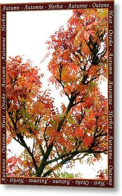 Autumn Leaves 3 Metal Print