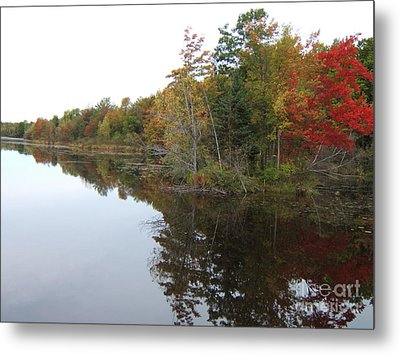 Autumn Reflection Metal Print by Margaret McDermott