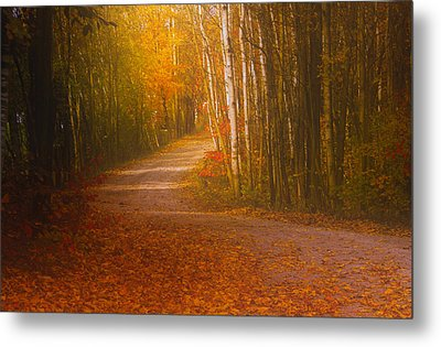 Metal Print featuring the photograph Autumn Roadway by Jim Vance
