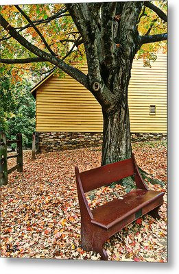 Autumn Wait Metal Print by Geri Glavis