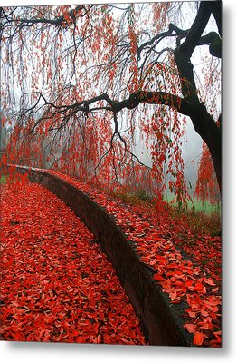 Metal Print featuring the digital art Autumnal Red by Bruce Rolff