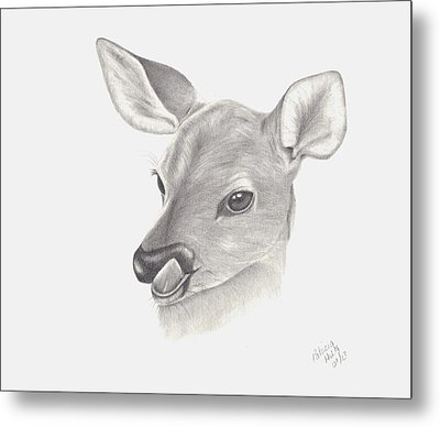 Metal Print featuring the drawing Baby Deer by Patricia Hiltz