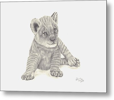 Metal Print featuring the drawing Baby Lion by Patricia Hiltz