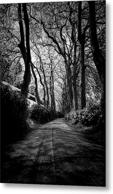 Back Road East 2 Metal Print