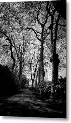 Back Road West Metal Print