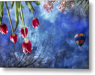 Balloonist  Metal Print by Betsy Knapp
