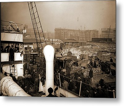 Baltimore, Maryland, Unloading Banana Steamer, Harbors Metal Print by Litz Collection