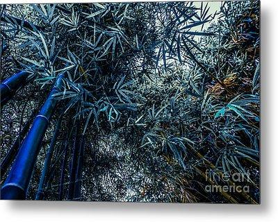 Bamboo - Blue Metal Print by Hannes Cmarits