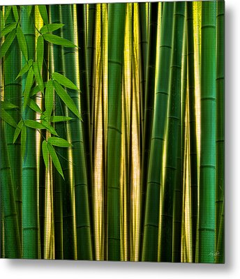 Bamboo Forest- Bamboo Artwork Metal Print by Lourry Legarde