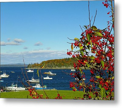 Metal Print featuring the photograph Bar Harbor by Gene Cyr