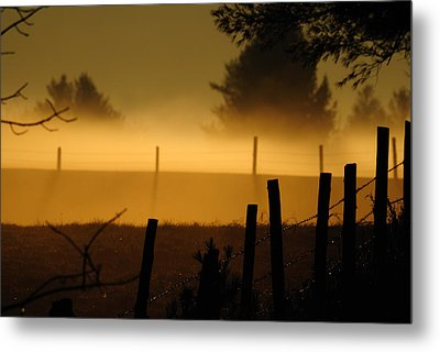 Metal Print featuring the photograph Barbed Silhouette by Paul Noble