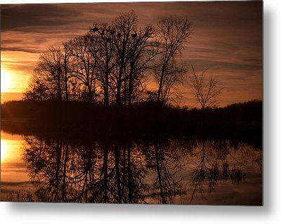 Metal Print featuring the photograph Bare Beauty by Jason Naudi Photography