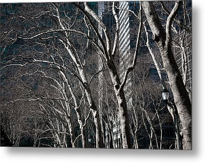 Bare Metal Print by Joanna Madloch