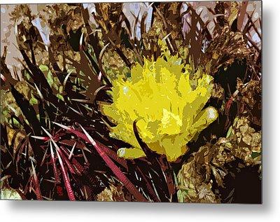 Barrel Cactus Bloom Metal Print