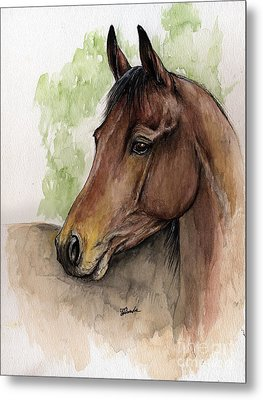Bay Horse Portrait Watercolor Painting 02 2013 A Metal Print by Angel  Tarantella